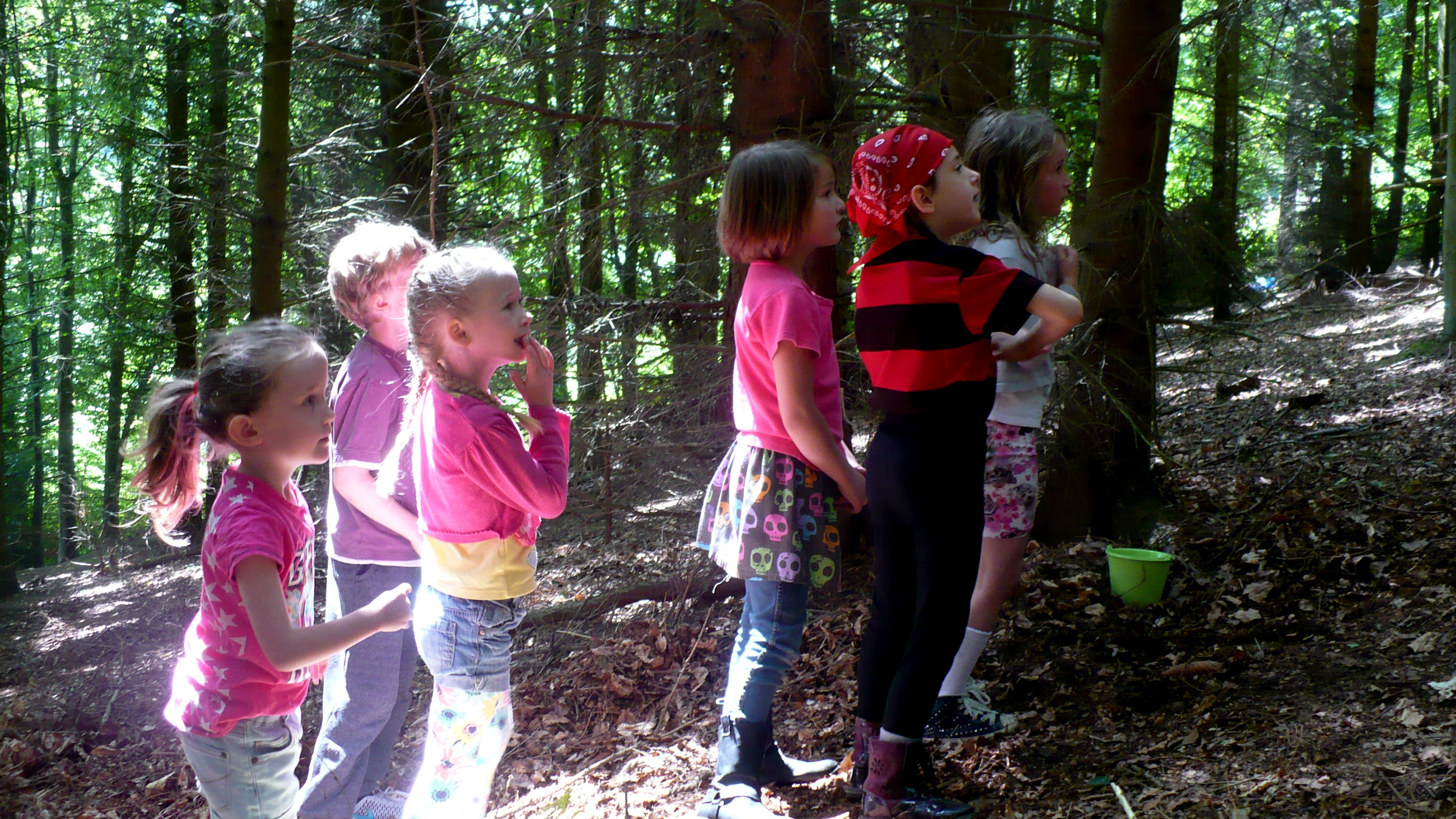 Fairy Falls Resue 2 Birthday Parties Colwyn Bay Forest School