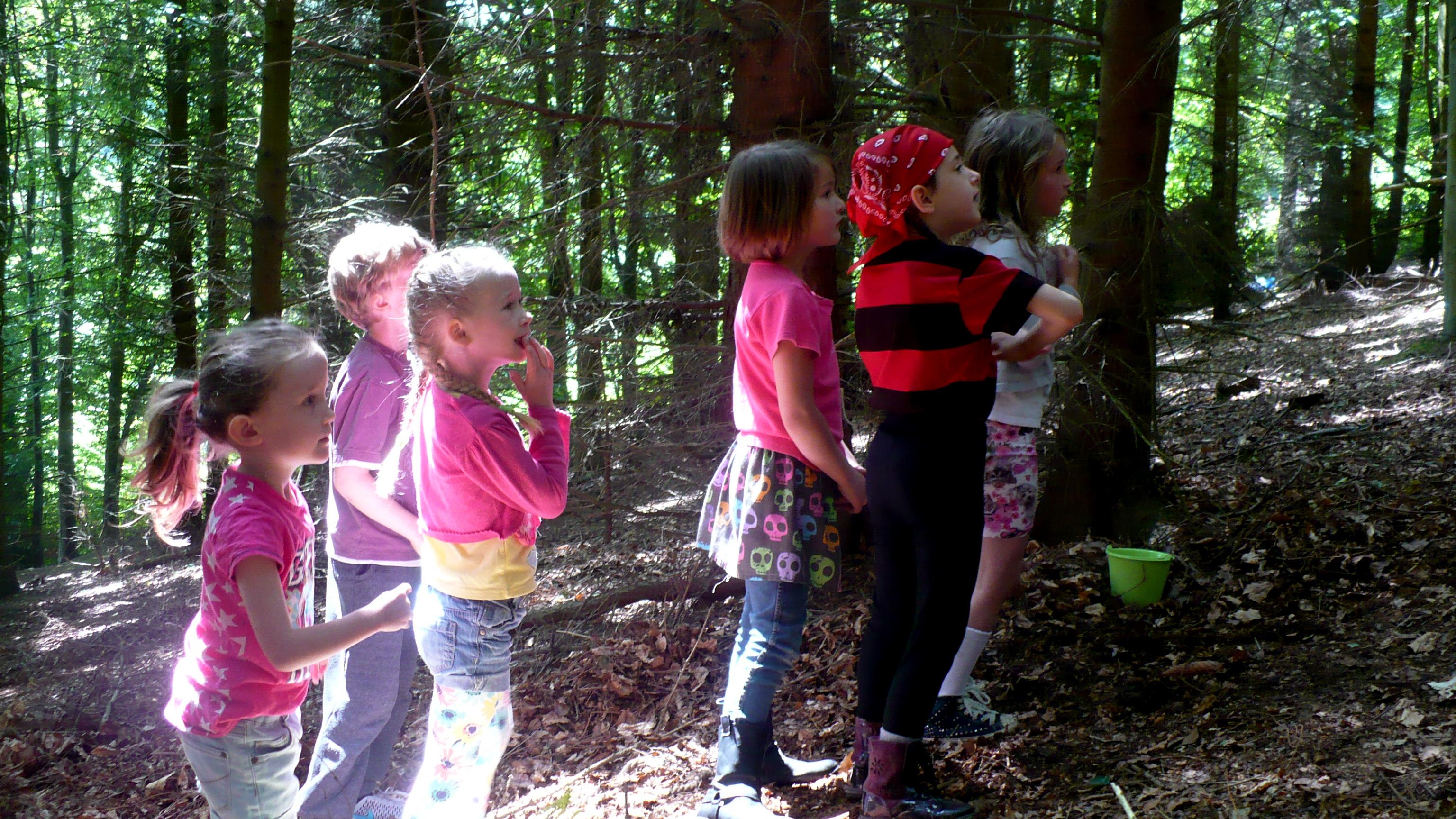 Fairy Falls Rescue 2 Colwyn Bay Forest School