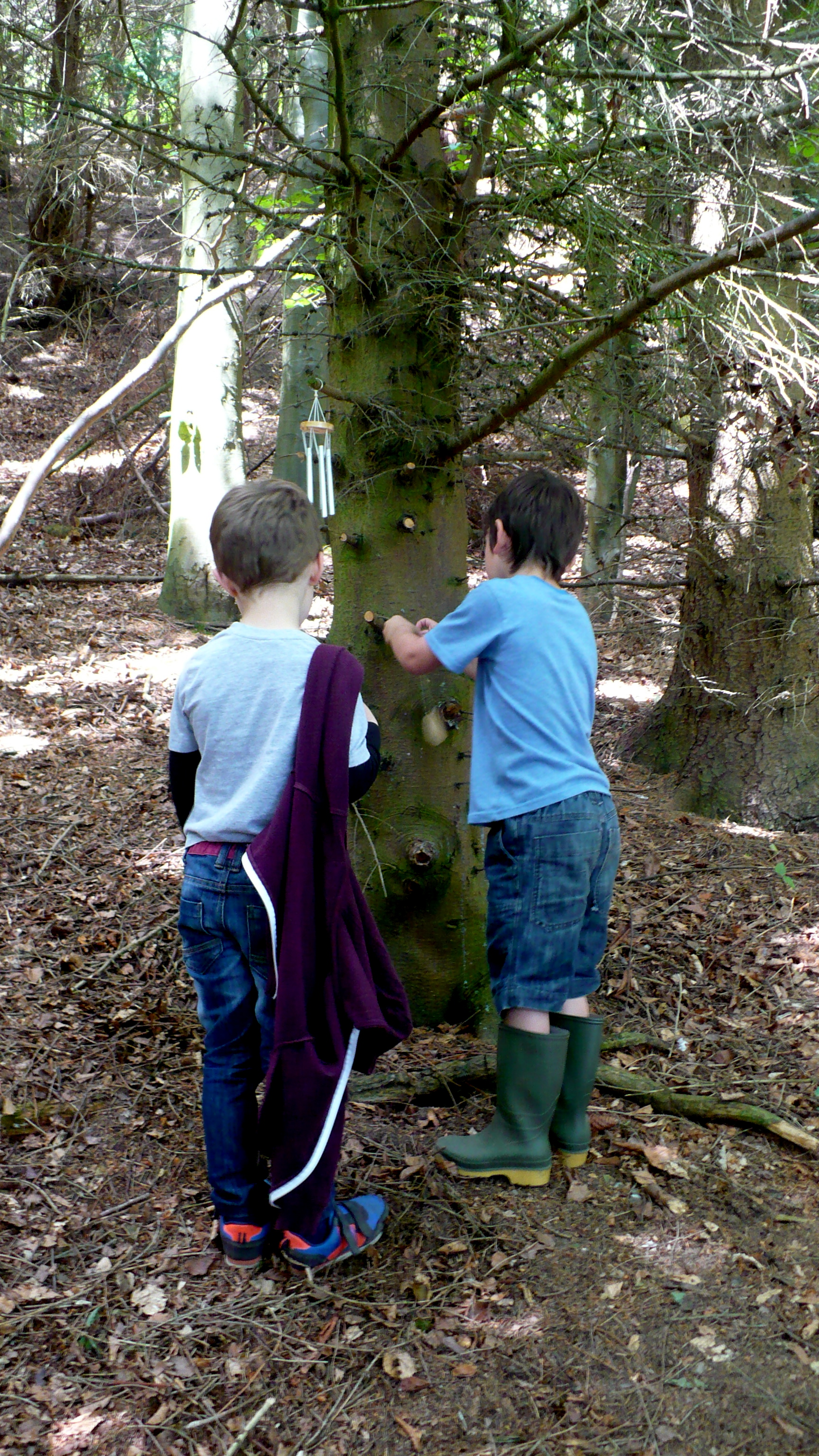 Forest Play 3 Colwyn Bay Forest School